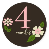 brown_floral_4_months_belly_sticker-r881758ea0c594660a25d5ac42841dffb_v9wth_8byvr_324